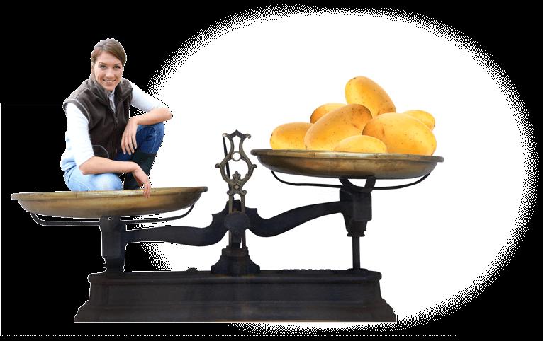 ichesses nutritionnelles de la pomme de terre