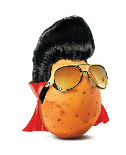 La pomme de terre, star incontestée de la variété