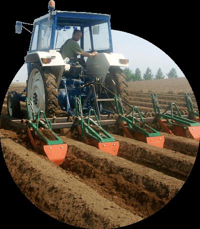 Les producteurs de pommes de terre apportent leur plus grand soin pour produire des pommes de terre